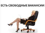 Менеджер по рекламе-можно без опыта