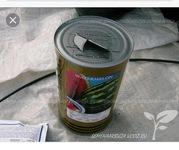 Продаю семена арбузов оптом