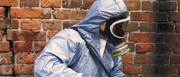 Юг Дезинфекция - уничтожение вредных насекомых и грызунов