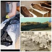 Лечение и отдых в санатории Айша Биби